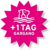 Stern_Gargano