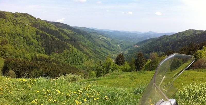 Artikelbild Schwarzwald1 800×410